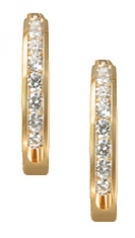 EG1-2  Diamond Hoop Earrings 14KY