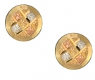ETT-46  Multi Color Gold Earrings